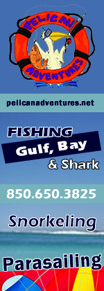 Pelican Adventures Destin Florida